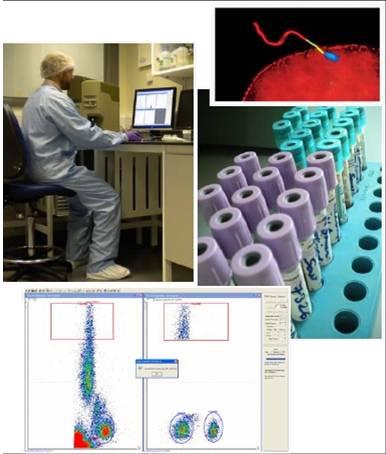 型流式细胞仪的研制,开发